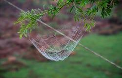 Spin netto met waterdalingen royalty-vrije stock foto's