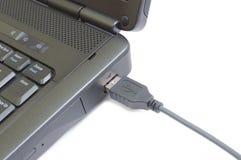 Spina del USB Immagini Stock