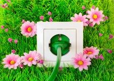 Spina di corrente verde in sbocco sull'erba fotografia stock
