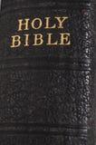 Spina dorsale d'annata del libro della bibbia Immagini Stock Libere da Diritti
