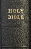 Spina dorsale della bibbia santa Immagine Stock Libera da Diritti