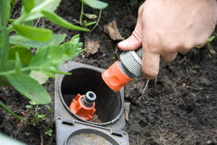 Spina e socke d'innaffiatura dell'erba dello spruzzatore di irrigazione Immagini Stock Libere da Diritti