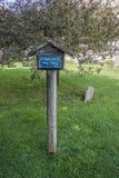 Spina santa di Glastonbury Fotografia Stock Libera da Diritti