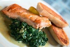 三文鱼和spinac 免版税图库摄影