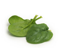spinach Foto de Stock