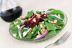 Spinach, almond and cranberry salad. Stock Photography