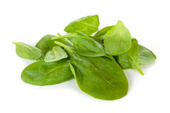 Spinach. Royalty Free Stock Image