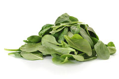 Spinach. Baby spinach studio isolated on white background stock photo