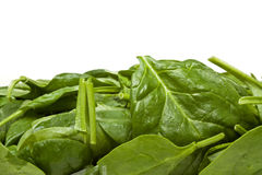 Spinach Background Royalty Free Stock Images