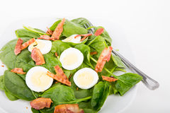 Spinach Bacon and Egg Salad Royalty Free Stock Photos