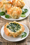 Spinach baking Royalty Free Stock Photography