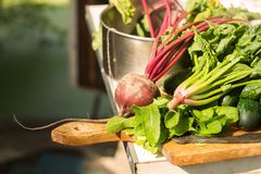 Spinach and beet on the table Stock Photo