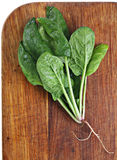 Spinach on board Royalty Free Stock Images