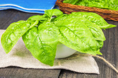 Spinach in bowl on table Stock Photography