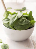 Spinach in a bowl Stock Image