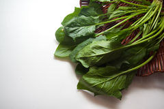 Spinach in box Royalty Free Stock Photography