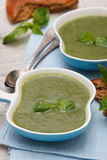 Spinach and broccoli soup Stock Images