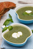 Spinach and broccoli soup Royalty Free Stock Photography