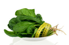 Spinach bunch Royalty Free Stock Photos