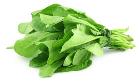 Spinach bundle Stock Photo