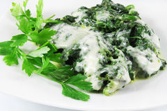 Spinach with cheese Stock Photography