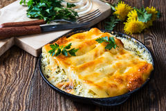 Spinach and cheese cannelloni,  Italian cuisine Royalty Free Stock Images