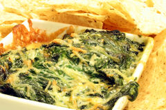 Spinach and Cheese Dip Royalty Free Stock Images