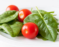 Spinach and cherry tomatoes Stock Photography