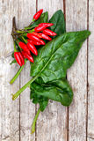 Spinach And Chili Peppers Stock Photos