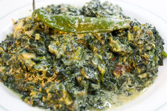 Spinach with coconut milk. Spicy Spinach with coconut milk Royalty Free Stock Photo