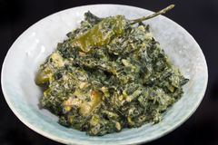 Spinach with coconut milk. Spicy Spinach with coconut milk Stock Images
