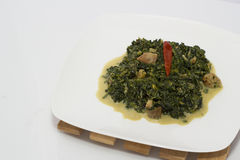Spinach with coconut milk Stock Photos