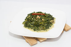 Spinach with coconut milk Stock Images