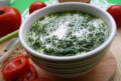 Spinach with cream. Resh spinach with cream in a bowl Stock Images