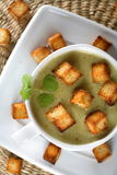 Spinach cream with coriander Royalty Free Stock Photography