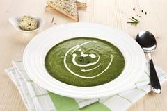 Spinach cream soup. Stock Photo