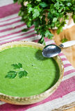 Spinach cream soup Stock Photography