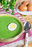 Spinach cream soup with egg Royalty Free Stock Photos
