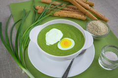 Spinach cream soup. With egg and sour cream Royalty Free Stock Image