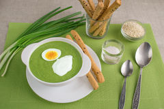 Spinach cream soup. With egg and sour cream Royalty Free Stock Photos