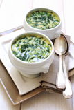 Spinach cream soup Stock Image