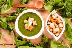 Spinach creamy soup Stock Images