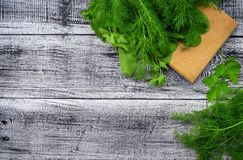 Spinach, dill, cilantro, parsley. Fresh greens on a ryhdelochnoy. Spinach, dill, cilantro, parsley. Fresh greens and a kitchen tool on an old wooden table. Top Stock Image