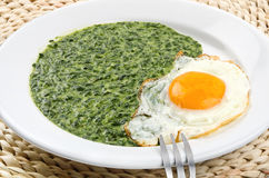 Spinach with egg Stock Images