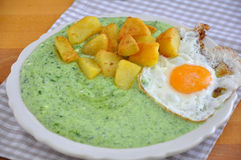 Spinach with egg Stock Image