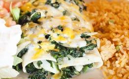 Spinach Enchiladas Stock Photo