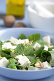 Spinach and feta salad Stock Photography