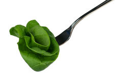 Spinach on a fork Stock Photography