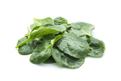 Spinach. Fresh spinach leaves isolated on white background stock photos