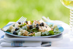 Spinach And Grogonzola Cheese Salad Stock Images